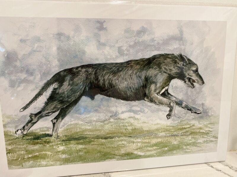 Irish Wolfhound Running Ltd Ed Print By Martha Van Loan 11x14
