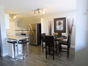 2BR EXECUTIVE CONDO FOR RENT IN SW