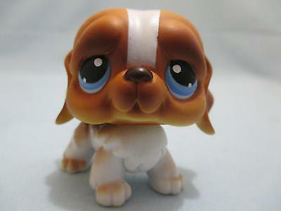 Littlest Pet Shop LPS #76 Brown/White St Bernard Dog Blue Eyes 100% Authentic