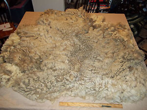 2013-Bargain-Raw-Wool-Fiber-Fleece-Sheep-Alpaca-Llama-Cashmere-Angora