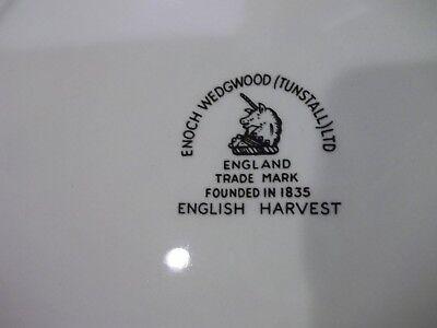 """1 Enoch Wedgewood English Harvest Dinner Plate 10 1/8"""" Fruit Center White"""