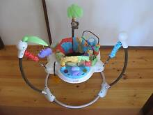 Fisher Price Jumperoo - perfect near new condition Keilor Downs Brimbank Area Preview