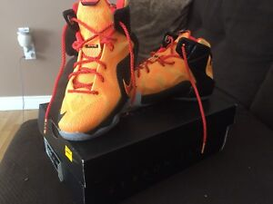 Lebron XII (GS) 4.5 Youth sneakers $75