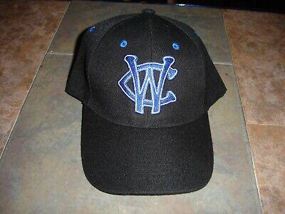 Windy City Baseball (NEW Windy City Thunderbolts Frontier League baseball hat adjustable back)