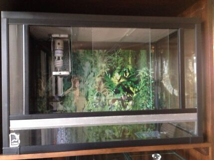 URS reptile enclosure - indoor Largs North Port Adelaide Area Preview