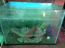 Fish tank Cranbourne Casey Area Preview