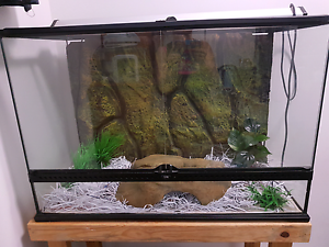 Reptile tank Annandale Townsville City Preview