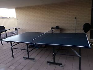 Table tennis Canning Vale Canning Area Preview