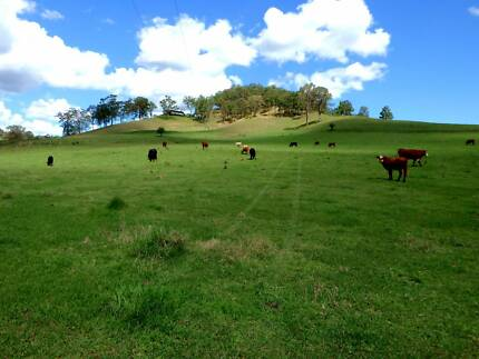 Productive, 40 Hectare Cattle Farm - Pretty with Creek