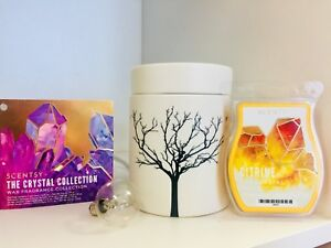"Scentsy Warmer ""Tilia"" and wax"