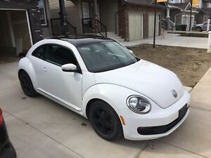 2014 Beetle- reduced!