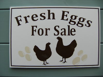 rigid a4 fresh eggs for sale sign eglu/coop ideal free p&p