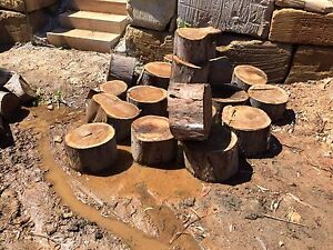 Log off cuts firewood Joyner Pine Rivers Area Preview