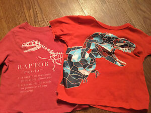 Carters 2T shirts