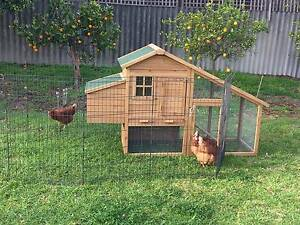 COOP Constructed NEW Chickens Hen House Run Belmont Belmont Area Preview