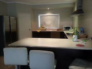 FEMALE SINGLE ROOM / $170 / all bills included Carindale Brisbane South East Preview