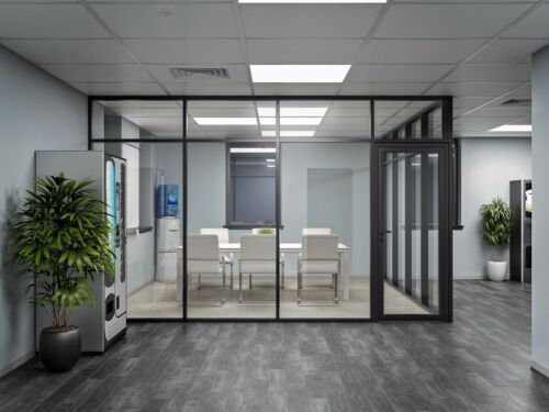 CGP Glass Aluminum 2 Wall Office Partition System w/Door 10