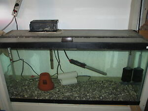 30 gallon fish tank top fish tank forum view topic my for Best tank cleaning fish