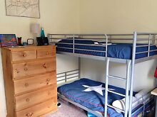 IKEA BUNK BED FRAME - IN GREAT CONDITION AND STURDY! Canterbury Canterbury Area Preview
