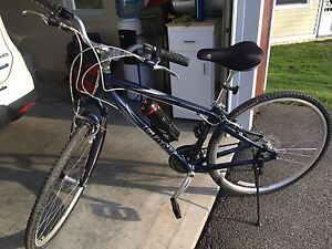 Bicyclette Giant Cypress DX
