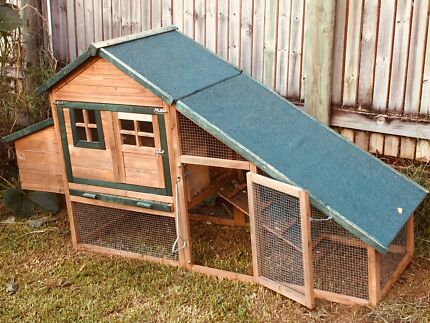 Chicken coop & 4 laying Isa Brown chickens
