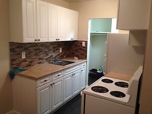 A Renovated  2 Bed, 1 Bath Apt for Rent w/ Utilities & Balcony