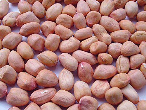 Red Raw Peanuts 50 lb
