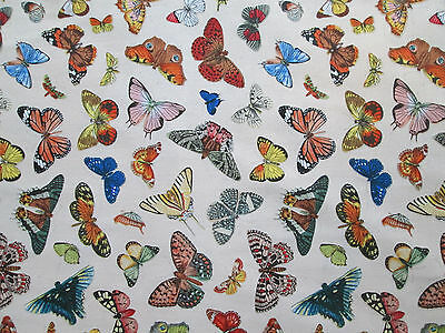 Butterfly Realistic Butterflies Cream Cotton Fabric FQ