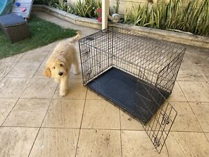 You & Me Brand - Large Dog Crate