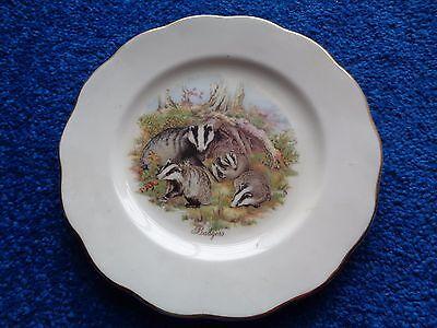 Badgers Bone China Plate