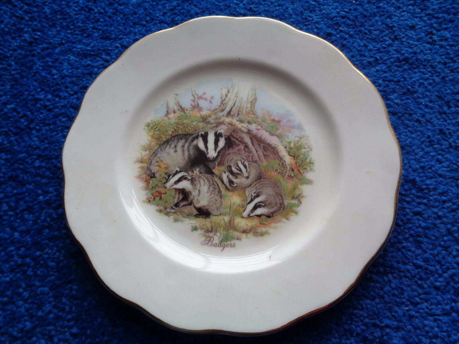 Bone China Badgers Plate