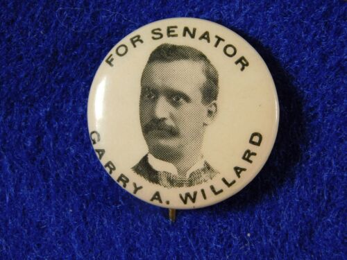 "Original 1900 Garry A. Willard New York State Senate Campaign Button .75"""