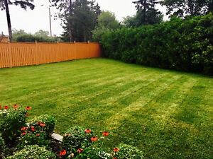 A&M LANDSCAPING - YOU GROW IT WE MOW IT!!
