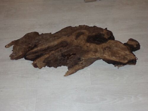 """33"""" x 15"""" Unique Piece of Wood For Projects Taxidermy Etc."""