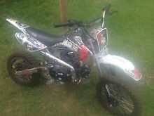 125cc pit bike nothing needed ready to go riding. Redcliffe Redcliffe Area Preview