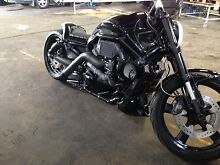 Harley Davidson Vrod muscle custom Westminster Stirling Area Preview