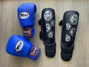 Twins Muay Thai Boxing Gloves Punch shine pads