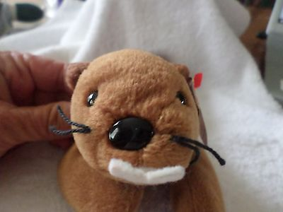 RARE ERROR CROOKED NOSE TY BEANIE BABY BUCKY THE BEAVER ERRORS ON TUSH TAG PVC
