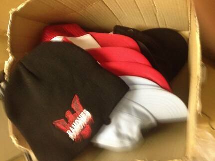 bulk lot of 20 hats caps beanie blank and licensed prints ramones North Ryde Ryde Area Preview
