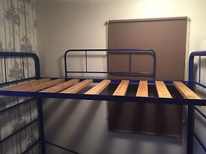 Blue bunk bed St Lucia Brisbane South West Preview