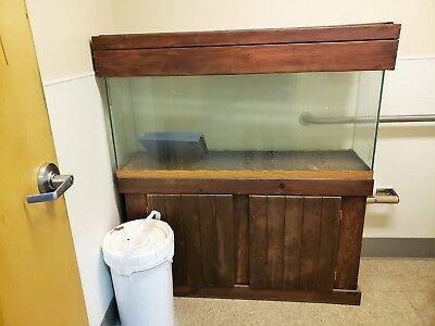55 GALLON FISH TANK WITH STAND AND STARTER ACCESSORIES