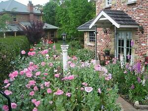Annie's cottage at Trafalgar b and b Grose Vale Hawkesbury Area Preview