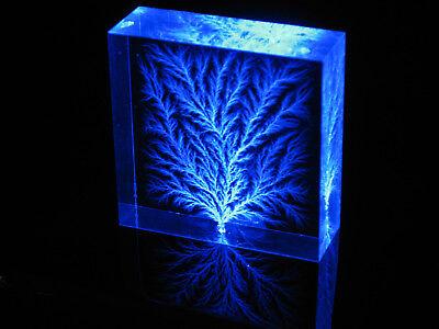 "New ""Captured Lightning"" Edge-Rooted Lichtenberg Figure Electron Tree"