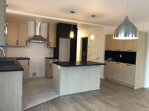 Appartement style condo neuf 41/2