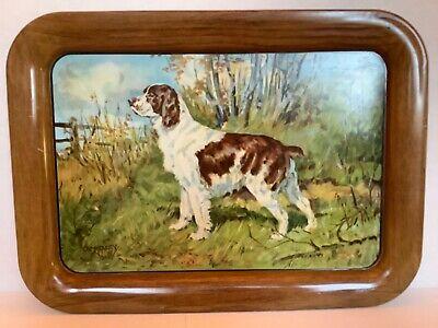 Vintage Ole Larsen Litho Tin Metal Hunting Dog TV Tray Springer Spaniel AC Co.