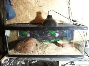 Terrarium 20 gallons pour reptile tout inclus pour 100$