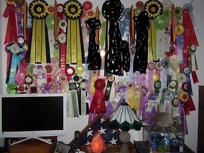 90+ Lot Rosette Ribbons AKC UKC Dog Show Cat Show VGC 80s - 2000s