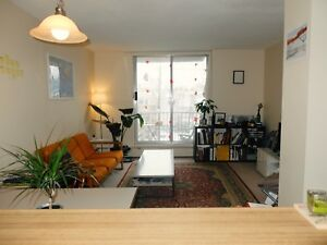 SUNNY SOUTH END 1BDR SUBLET FEB TO JUNE