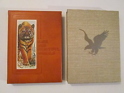 RARE AND BEAUTIFUL ANIMALS Leather Book & Cover F Salvadori 1st Edition