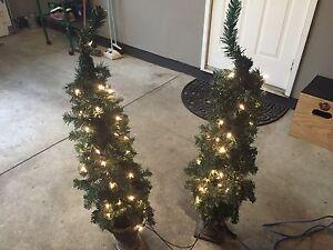 Indoor/Outdoor Christmas Trees